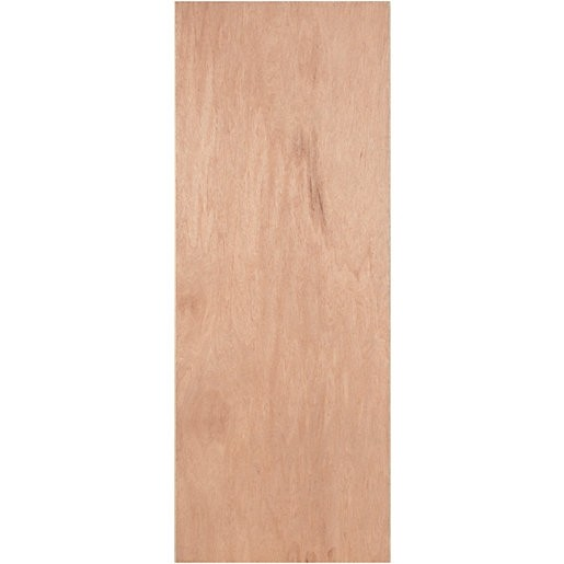 PLY FLUSH Hollow Door